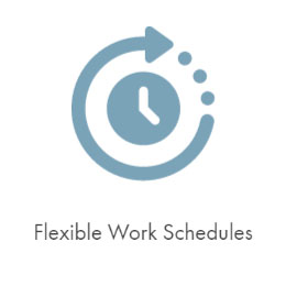 flexible schedules icon.jpg