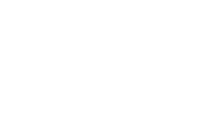 number of day services provided